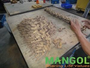 mangol-5_result-300x225